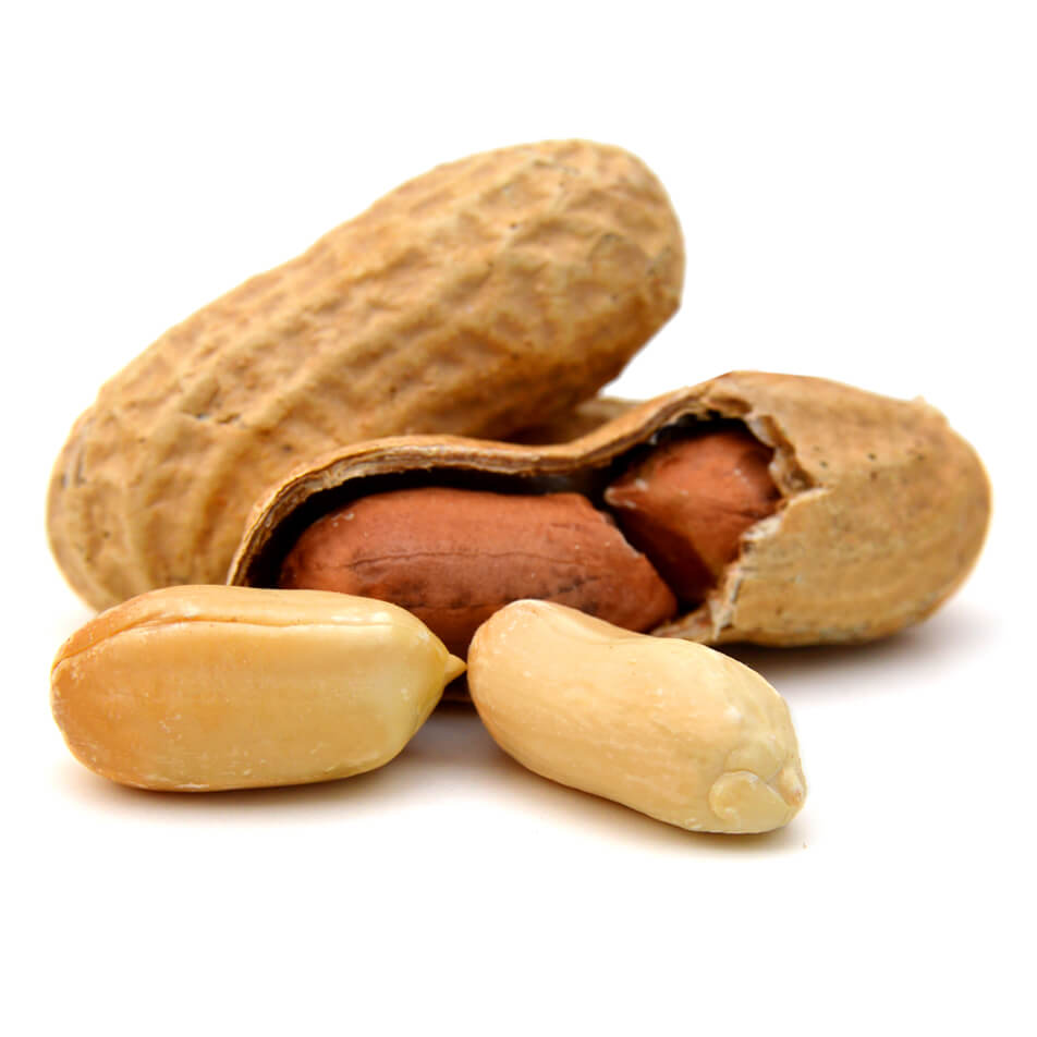 <strong>Peanuts</strong><br> are widely believed <br> 